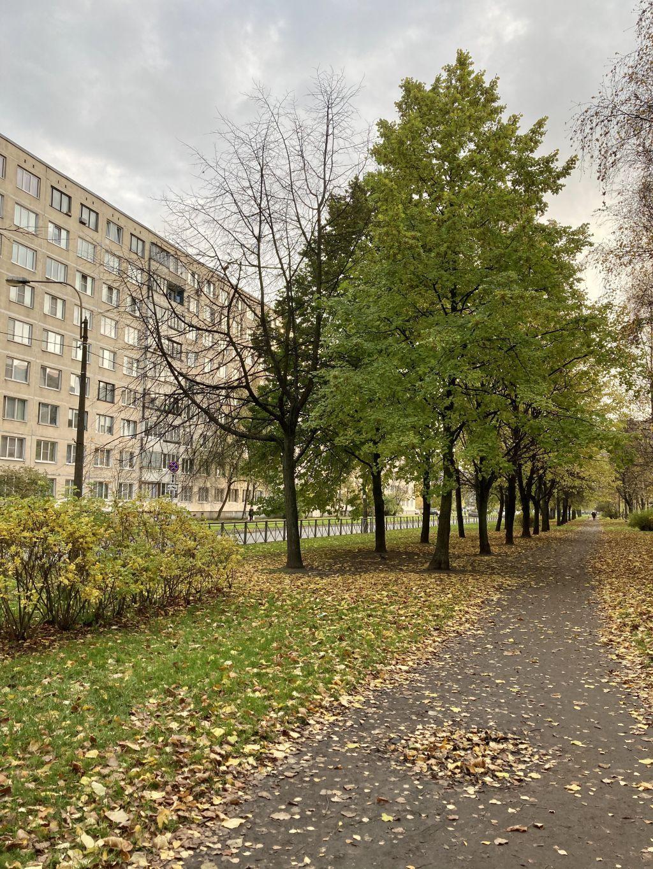 Сдам 1-ком.квартиру на бульваре Трудящихся