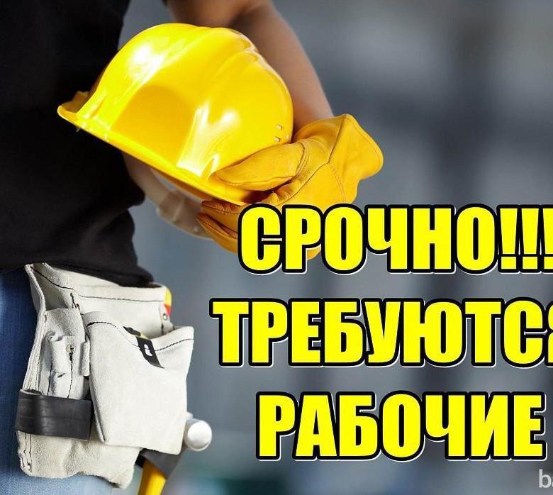 Требуется рабочий (г.Пушкин)