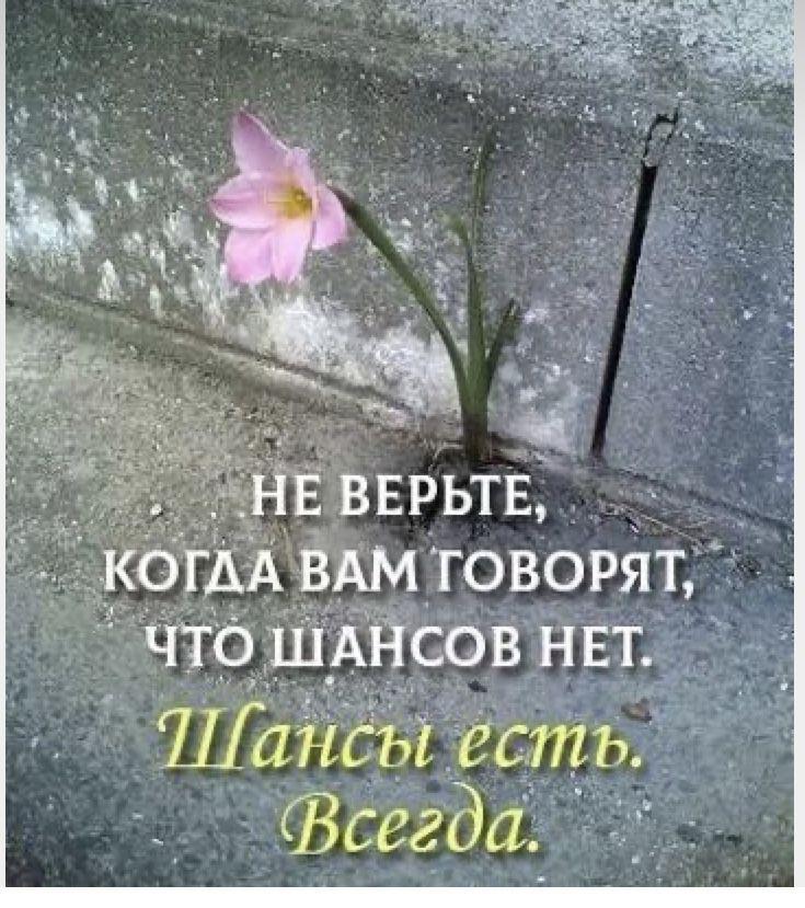 Помощь Потерпевшим (пострадавшим) от преступлений в С-Петербурге и ЛО